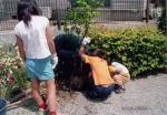 ノナネイチャークラブせせらぎ班 緑と水の生物多様性空間の再編(都市型親水公園の自然回帰活動)01