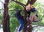 上郷森の会 広葉樹の混じる明るい森にして地域住民の憩いの森をつくる01