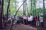コゲラの森づくりの会 コゲラの森の活用のための整備・イベント開催01