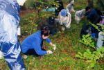 さいたま市みどり愛護会 市民による雑木林の保全と更新01