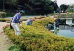 イトヨの里 泉が森公園運営委員会 開園1周年記念植樹祭01