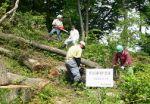 上仏子里山会 身近な里山の森林保護活動01