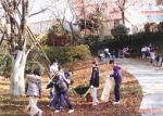 麻生多摩美の森の会 川崎市麻生区市民健康の森の管理・運営01