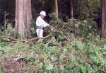 森林ボランティア「河内の森」協議会 トシの森林公園化花木植栽等環境整備事業01