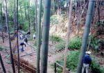 日本の竹ファンクラブ 竹林の保全育成活動と地域コミュニティづくり01