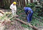 加治丘陵につつじを植え戻す会 落葉、広葉樹の植樹と花木による里山雑木林づくり01