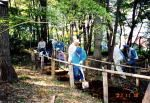 多摩緑地保全地区こもれびの会 里山のあふれる緑、里山雑木林を守る会01