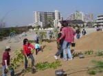 習志野市立谷津南小学校 学校環境を考える会 「潮風に緑のとりでをつくろう!」プロジェクト01