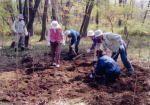 平林禅寺の自然と文化を守る会 武蔵野を代表する落葉広葉樹林の回復と保全01