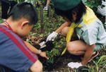 世田谷アドベンチャークラブ 「森を守り隊」プロジェクト01