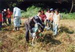 麻生多摩美の森の会 麻生区市民健康の森の管理・運営01