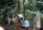 粟野の森の会 樹林地の保全・管理および催し物01