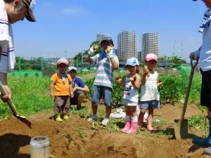 第32回 緑の都市賞 受賞作品概要