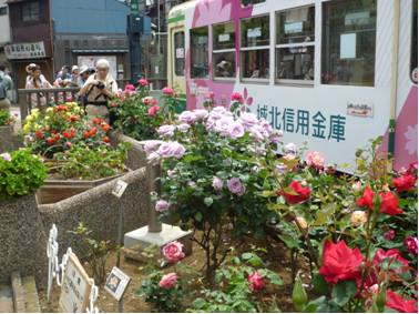 荒川バラの会 東京都荒川区01