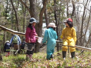 【プレスリリース】2013年度 花王・みんなの森づくり活動助成 募集開始!<br />(締め切り2013/10/31)