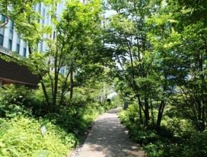 【プレスリリース】快適で魅力ある環境『都市のオアシス』認定候補緑地における居心地・快適度の測定を開始