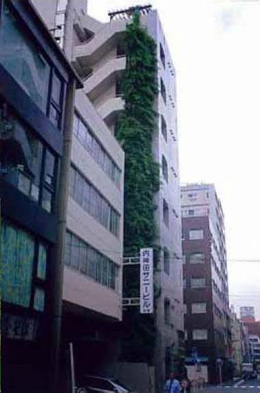 所有:所有・施工・管理:株式会社久保工 内神田サニービル 壁面緑化フジ01