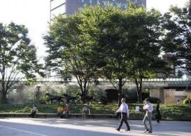 森ビル株式会社 六本木ヒルズの人工地盤・制震装置等の緑化03 人工地盤緑化「66 プラザ」