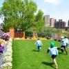 学校法人芦田学園 東邦レオ株式会社 屋上の芝生園庭、千住寿幼稚園