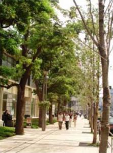 三井不動産株式会社(事業者代表) 東京ミッドタウン02