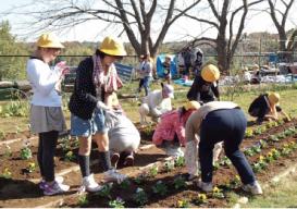 光風台 花と緑の会 光風(こうふう)台(だい)ガーデン03