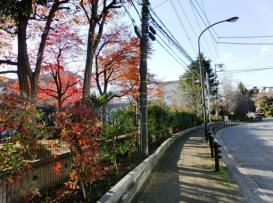 神奈川県横須賀市 鶴久保小学校02