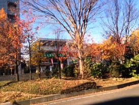 花と緑のまちづくり検討委員会 JR宮原駅前緑地02