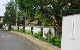特定非営利活動法人日本公開庭園機構 日野市立日野第一小学校03