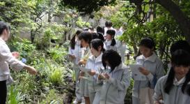 学校法人小野学園女子中学・高等学校 小野学園自然観察園02