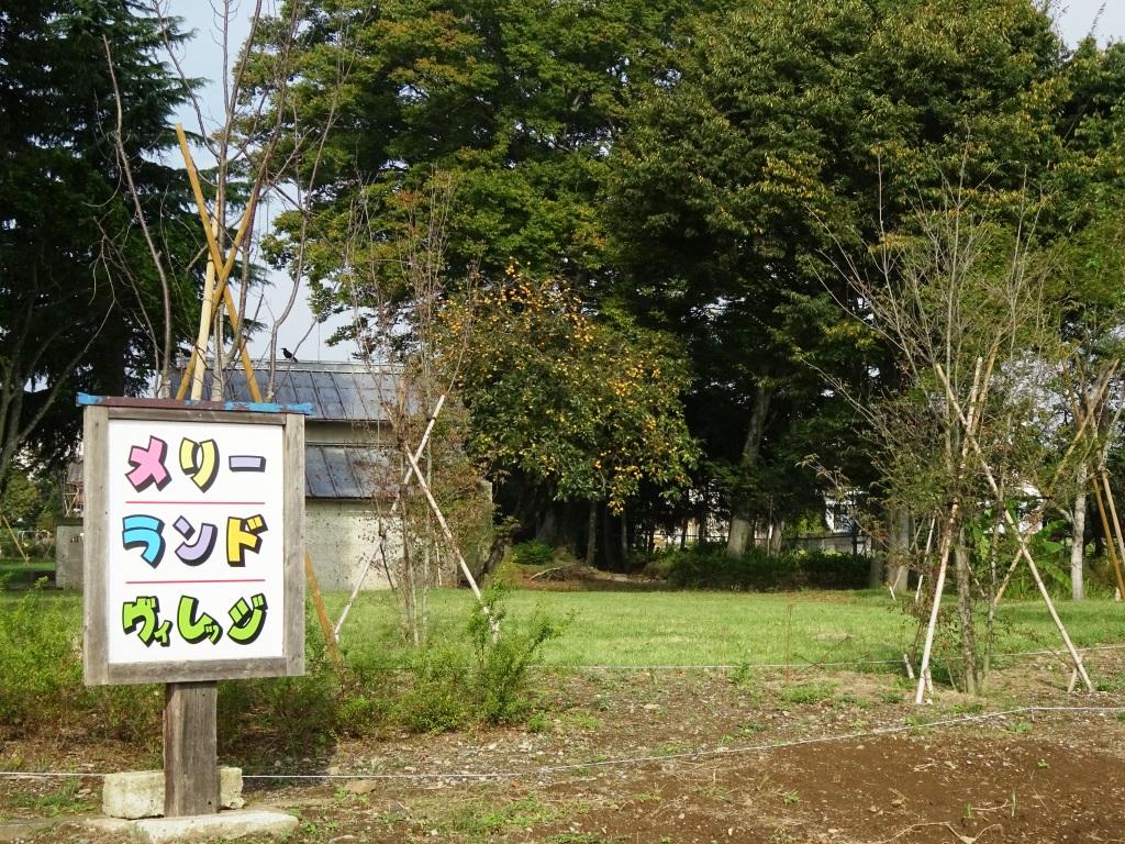 社会福祉法人 共育会 メリーランド保育園 メリーランド 自然体験・交流の森01