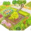上尾市立東町小学校 おやじの会 地域と育むみどりの学校ファーム&ガーデン