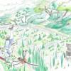 特定非営利活動法人 地球デザインスクール ハッチョウトンボのジュル田プロジェクト