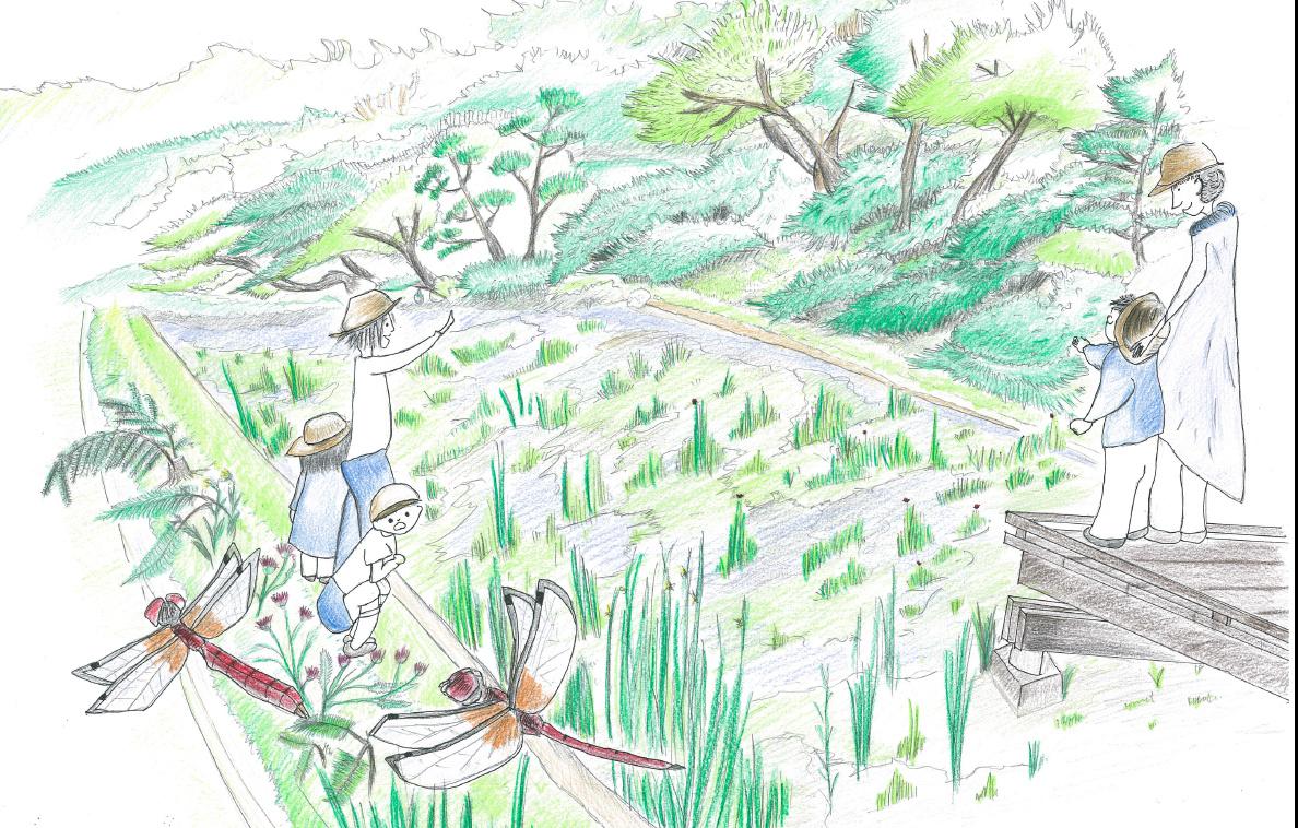 特定非営利活動法人 地球デザインスクール ハッチョウトンボのジュル田プロジェクト01