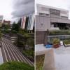 三条市役所ひまわり倶楽部 廃材からスタートした市民広場の緑化