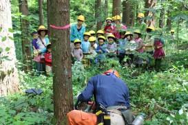 2016年度助成団体/特定非営利活動法人緑とくらしの学校