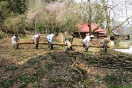 2016年度助成団体/特定非営利活動法人オオタカ保護基金