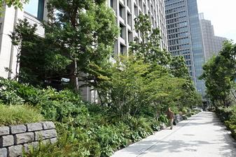 都市緑化技術研修会を開催します(平成30年1月11,12日)