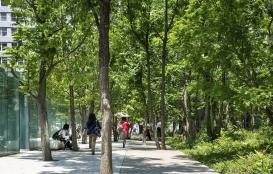 東京建物株式会社 大成建設株式会社 内山緑地建設株式会社 大手町の森02 森の中の歩道