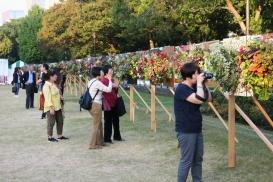 日比谷公園ガーデニングショー実行委員会 日比谷公園ガーデニングショーの14年にわたる開催03