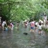 特定非営利活動法人グラウンドワーク三島 地域総参加による「水の都・三島」の「緑と水のネットワーク」創造