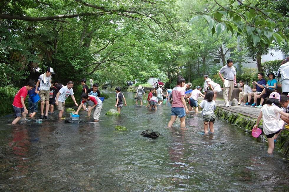 特定非営利活動法人グラウンドワーク三島 地域総参加による「水の都・三島」の「緑と水のネットワーク」創造01