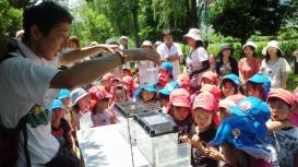 特定非営利活動法人グラウンドワーク三島 地域総参加による「水の都・三島」の「緑と水のネットワーク」創造03