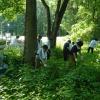 盛岡セイコー工業株式会社/ セイコーインスツル株式会社 生物多様性に配慮した緑地づくり
