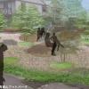 青葉山・八木山フットパスの会 地域の魅力を共有・発信する青葉山フットパーク