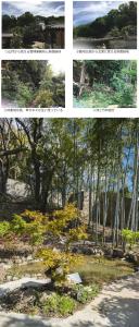特定非営利活動法人まち・すまいづくり 木の都 上町台地における「ともいきの里庭」整備プラン03