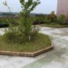 裾野市環境緑花事業協同組合 裾野市立鈴木図書館 風の広場 屋上花壇