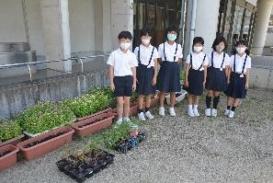 第37回全国都市緑化ひろしまフェア 「砂留文化を作ろう ~ホタルと花と砂留と~」