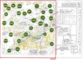 豊福地域・農の未来創造協議会 みどりのゆりかご ~豊福の生き物と子供たちを育む庭~02