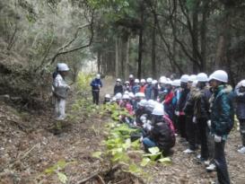加太観光協会 海と山と加太プロジェクト 〜海のための緑化事業〜02