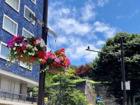 盛岡市 花と緑のガーデン都市づくり03